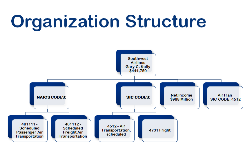 company organization structure chart: Organizational structure analysis for southwest airlines co i
